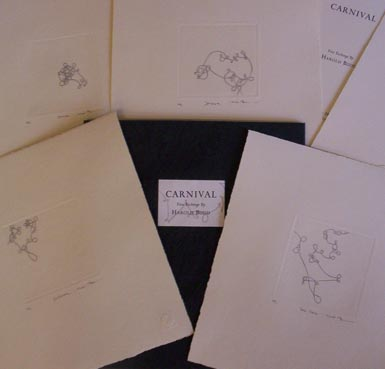 Carnival - 1st limited edition. Harold Budd.