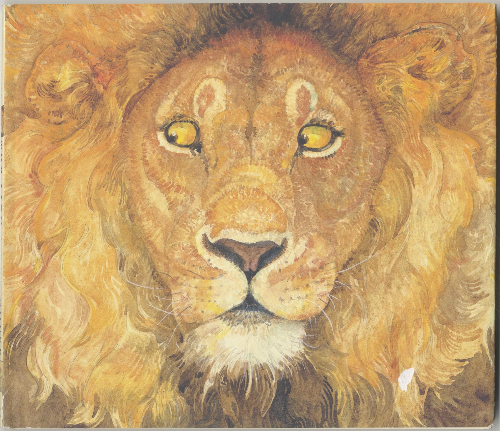 The Lion & The Mouse First Edition/first Printing. Jerry Pinkney.