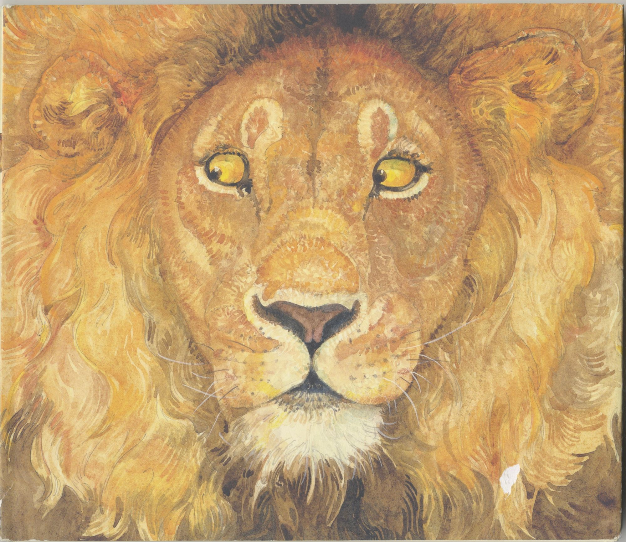 The Lion & The Mouse - 1st Edition/1st Printing. Jerry Pinkney.
