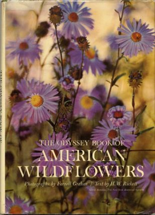 The Odyssey Book Of American Wildflowers - 1st Edition/1st Printing